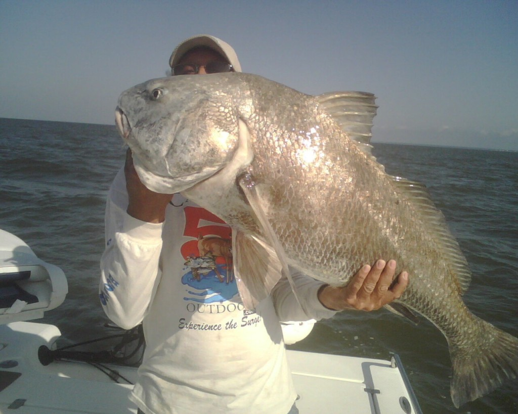 Experience the captain kenny difference for Lake pontchartrain fish species